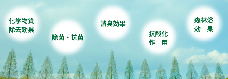 化学物質除去、除菌消臭、抗酸化作用、森林浴効果